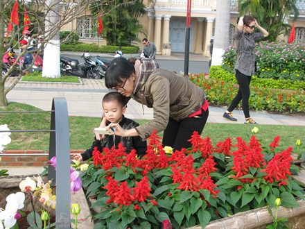 Em bé được má cho xem lại những tấm hình đã chụp