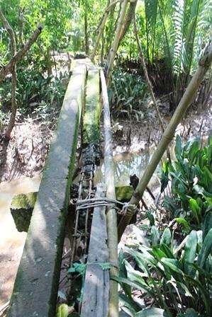 """""""Ngày nào cũng qua cây cầu này, con rất sợ bị rơi xuống kênh!"""" - 4"""