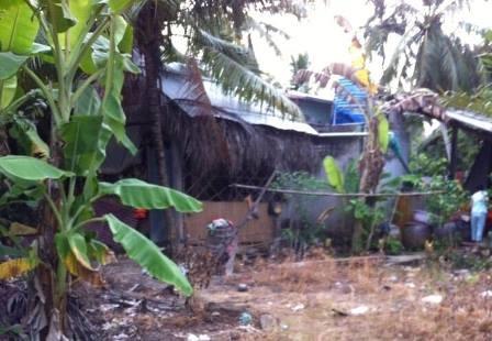 Phần đất bà Thắm sử dụng vẫn chưa trả lại cho chùa Tân Khánh dù đã bị thu hồi GCNQSDĐ