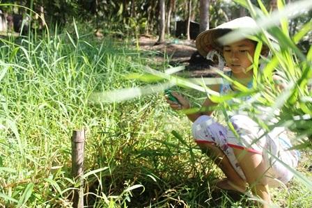 Hằng ngày bé My cắt cỏ cho dê ăn sau giờ học