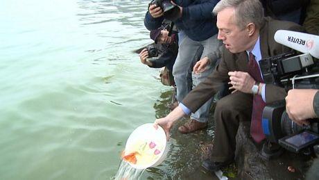 Đại sứ Ted Osius thả cá xuống Hồ Tây. (Ảnh: