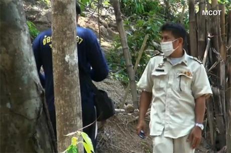 Ngôi mộ tập thể nằm sâu trong rừng (Ảnh chụp màn hình)