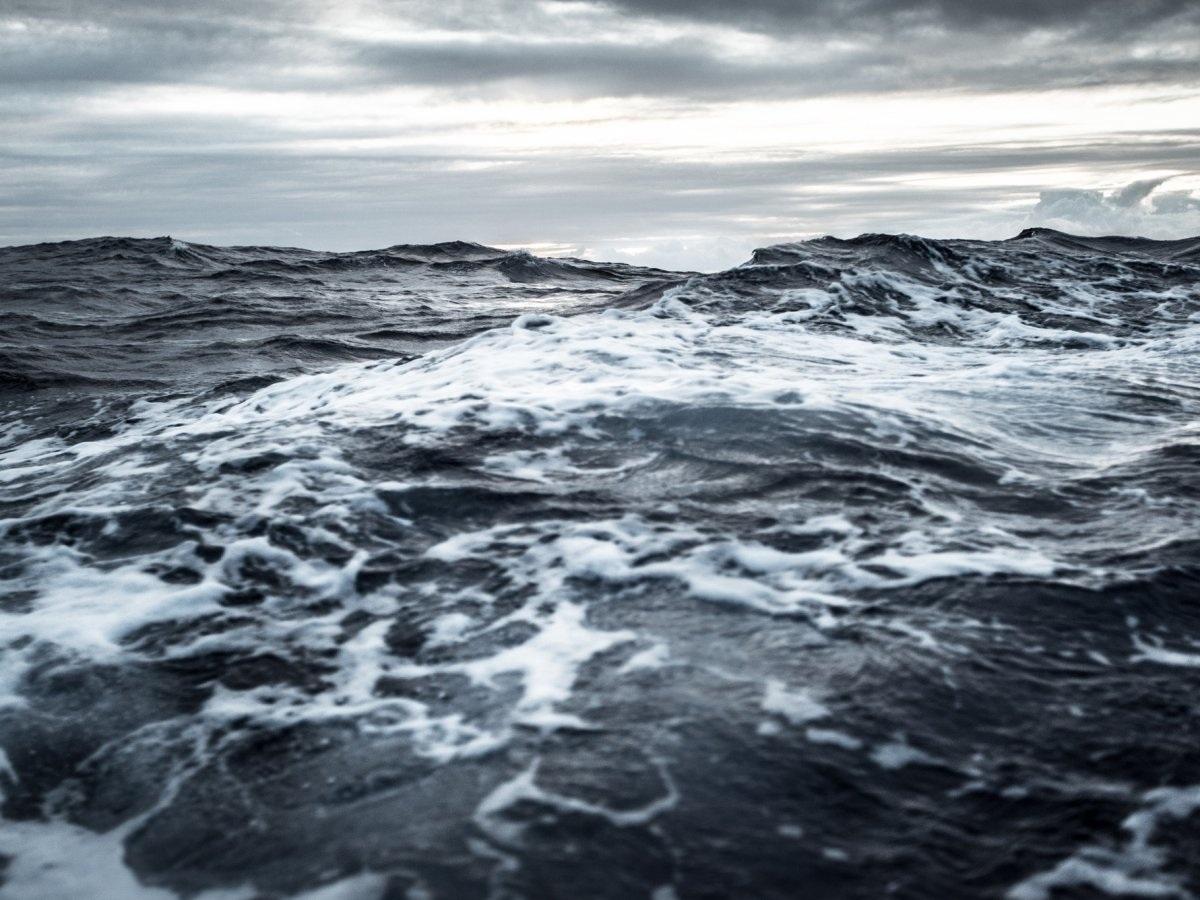 Chính nhờ sự xuất hiện của đại dương, các sinh vật đơn bào đầu tiên xuất hiện và đặt nền móng cho sự sống trên Trái Đất