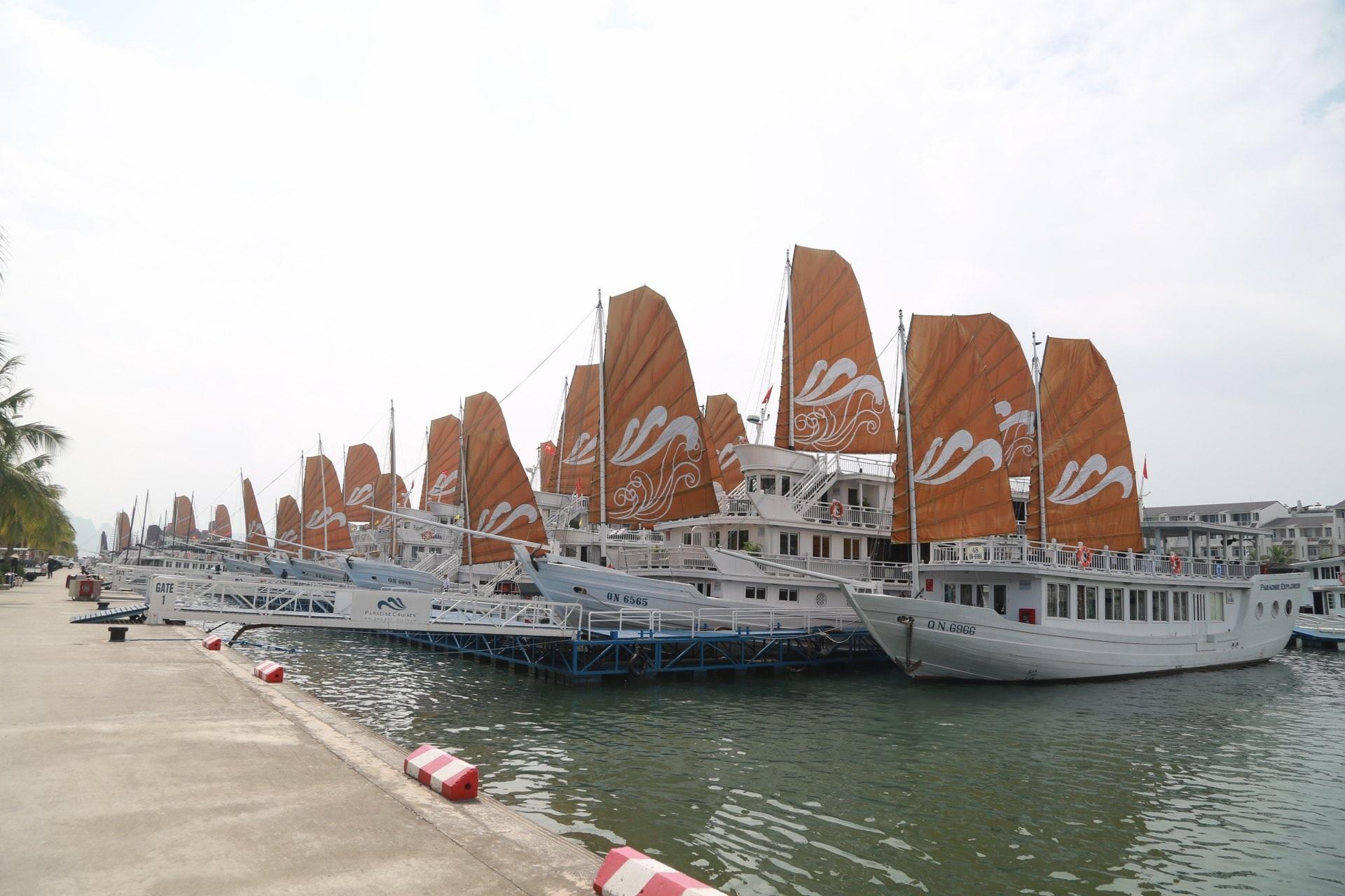 Vẻ đẹp của đảo Tuần Châu lên phim.