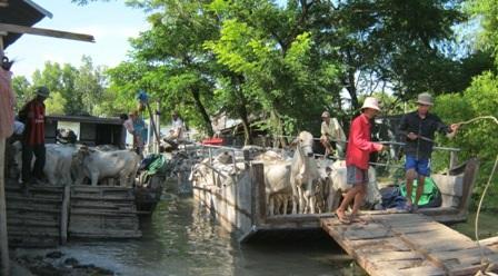 Chợ bò Tà Ngáo thuộc