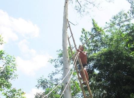 Giờ đây ở tuổi 68 ông Đấu vẫn còn treo mình trên cây vì không thể bỏ nghề.