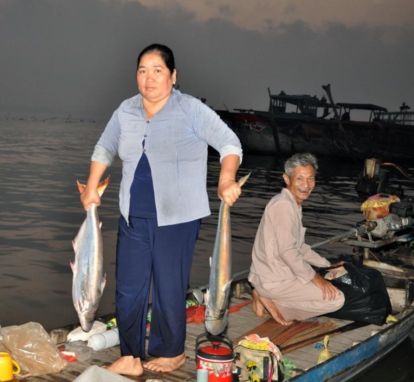 Đầu mùa cá bông lau đang hút hàng, hiện giá các thương lái thu mua từ 180.000 - 200.000 đồng/kg