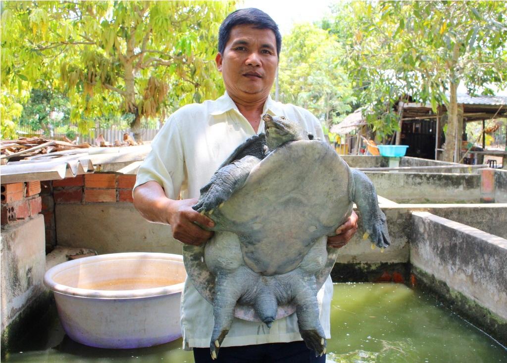 Con cua đinh nặng 35kg của ông Đinh Văn Thủ
