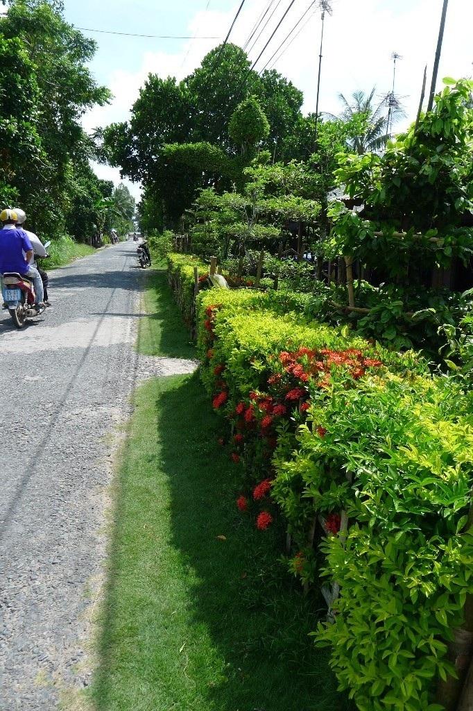 Nhiều người vẫn chọn các loại hoa kiểng để làm hàng rào
