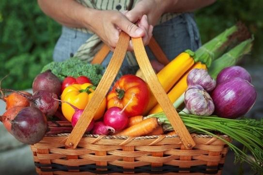 Chế độ ăn uống cân đối, ăn nhiều rau xanh và chất xơ giúp cơ thể khỏe mạnh