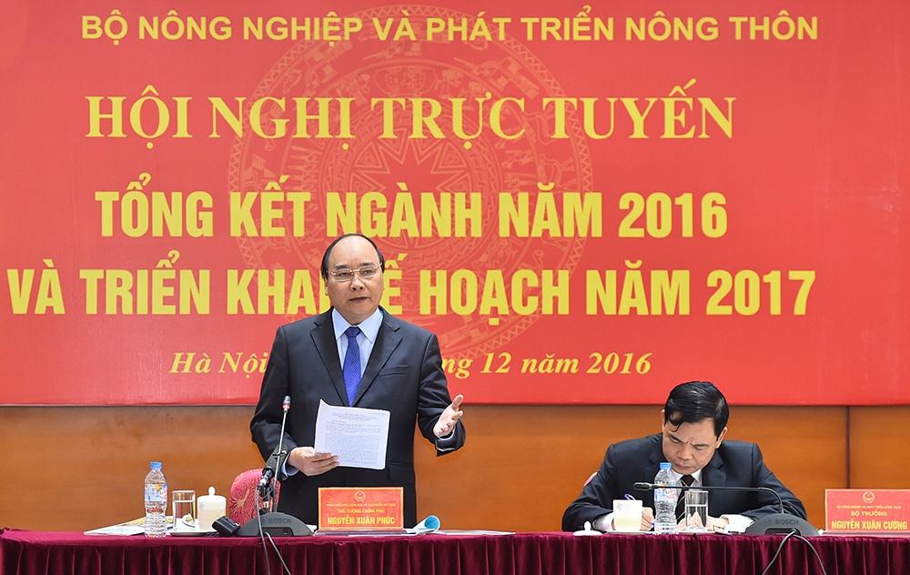 Thủ tướng yêu cầu bãi bỏ các chính sách ràng buộc sự phát triển của nông nghiệp (ảnh: VGP)