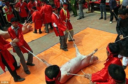 Mỗi năm, người dân ở làng Ném Thượng, tỉnh Bắc Ninh đều tổ chức lễ hội chém lợn.