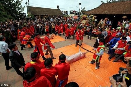 Đàn ông, trai tráng khỏe mạnh trong làng mặc trang phục truyền thống chuẩn bị cho lễ chém lợn.