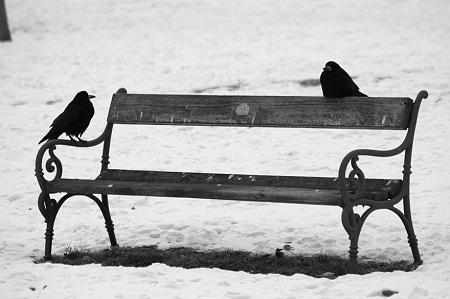 Những cặp đôi quá giống nhau có thể sẽ không bền lâu trong chuyện tình cảm: