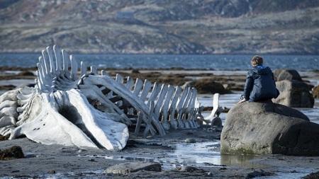 """Bộ phim """"Leviathan"""" khắc họa đời sống khó khăn, khắc nghiệt ở miền cực Bắc nước Nga."""