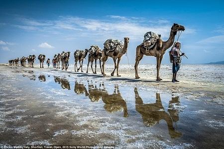 Một đoàn người di chuyển qua vùng trũng Danakil ở Ethiopia. (Ảnh: Enrico Madini)