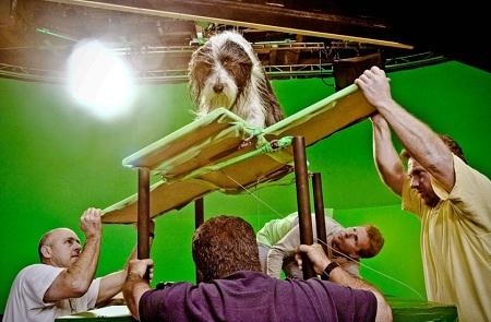"""""""The Shaggy Dog"""" (2005)"""