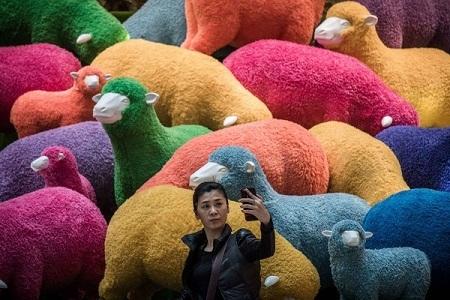 Năm Mùi, ở một số nước Á Đông, linh vật là chú cừu xinh xắn, dễ thương.
