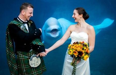 Ồ… Ở đây có lễ cưới.