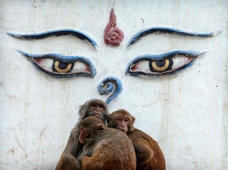 Đền Swayambhunath trước khi xảy ra động đất