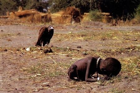 Ảnh chụp nạn đói ở Sudan năm 1993 của nhiếp ảnh gia Kevin Carter