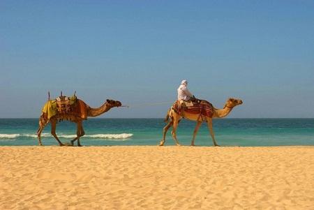 Bãi biển ở Agadir