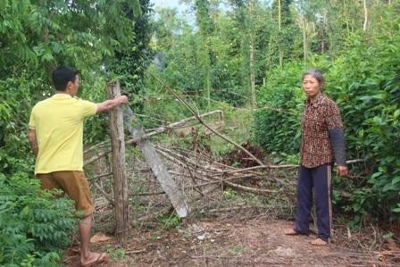 Hàng rào của ông Chề Văn Hùng và ông Lý Tàu Chắn dựng lên sau lần cưỡng chế của lực lượng chức năng