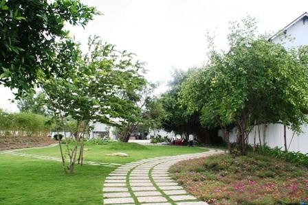 Khuôn viên rợp bóng cây xanh