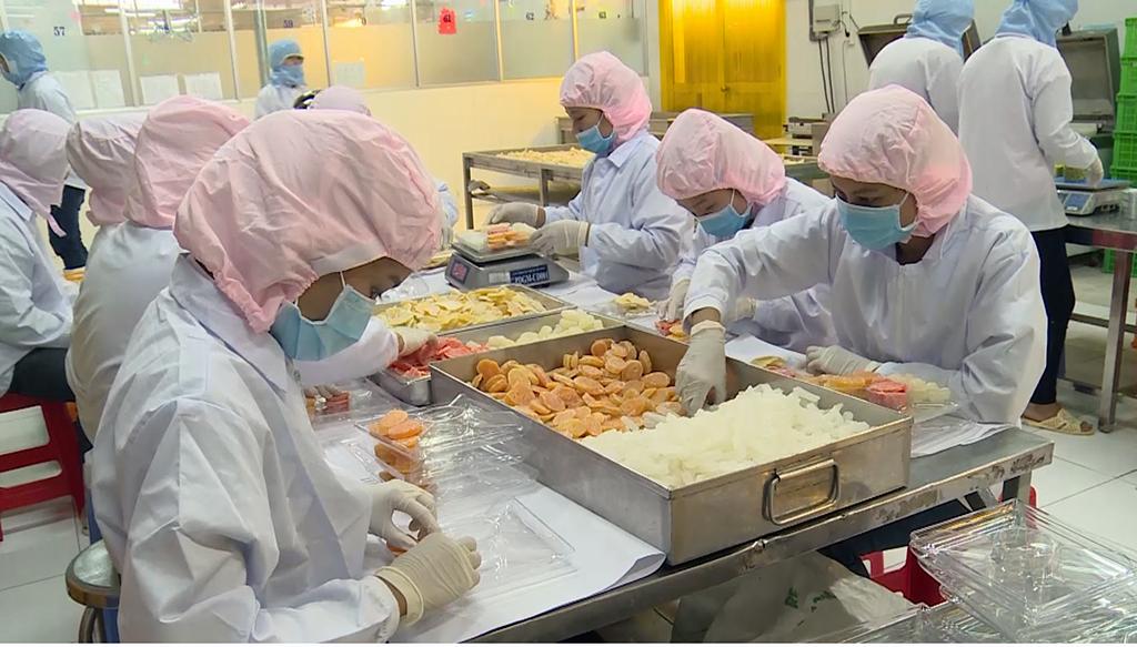 Nhiều doanh nghiệp xuất khẩu mứt Tết chịu thiệt hại hàng tỉ đồng vì thiếu nguyên liệu.