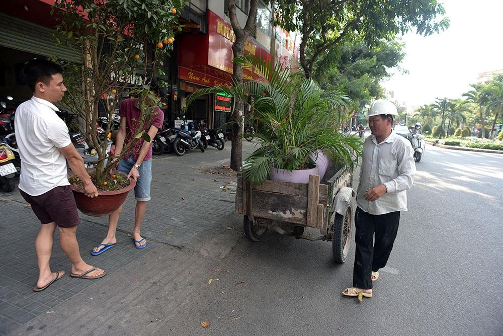 Những hộ kinh doanh khách sạn trên đường Phan Xích Long chuyển những chậu cây cảnh đặt trên vỉa hè đi nơi khác.