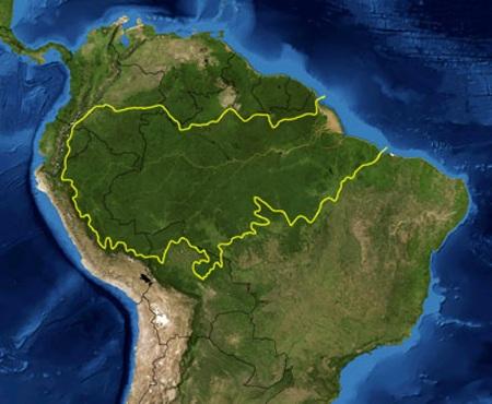 Khám phá vùng rừng Amazon - 1