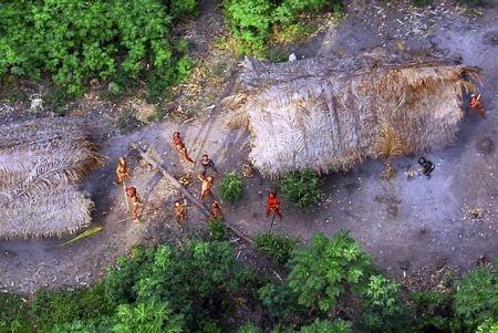 Khám phá vùng rừng Amazon - 12