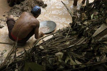 Khám phá vùng rừng Amazon - 14