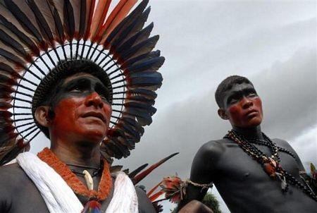 Khám phá vùng rừng Amazon - 15