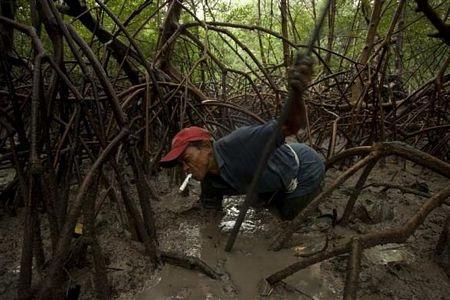 Khám phá vùng rừng Amazon - 18