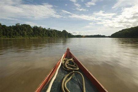 Khám phá vùng rừng Amazon - 19