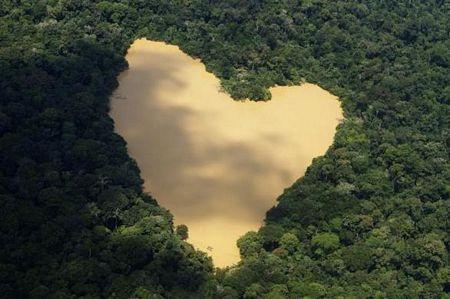 Khám phá vùng rừng Amazon - 2