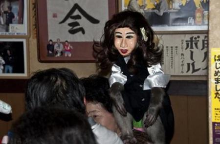 Chú khỉ còn được đeo mặt nạ để trông giống như người