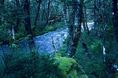 Hồ Blueđược xem là một kỳ quan thiên nhiên mới được phát hiện của New Zealand.