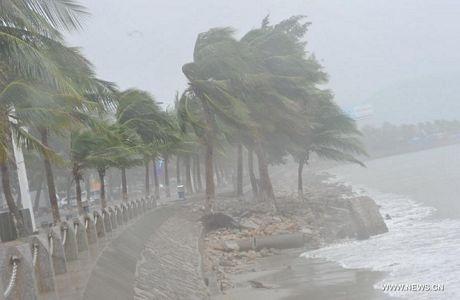 Bão Haiyan mang theo gió mạnh và mưa lớn đã đổ bộ vào đảo Hải Nam vào chiều 10/11.