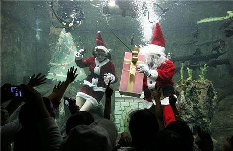 Các thợ lặn đóng giả Ông già và Bà già Noel chào đón các em nhỏ tới bể cá Guadalajara