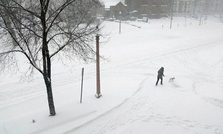 Một phụ nữ dắt chó cưng đi trên một con đường ngập tuyết ở St. Louis, bang Missouri.
