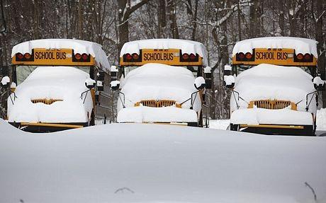Những chiếc xe buýt trường học bị tuyết phủ trắng tại Kalamazoo, bang Michigan.