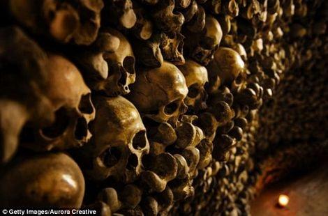 Bên trong nhà thờ, các bộ xương được gắn lên tường và trần nhà.