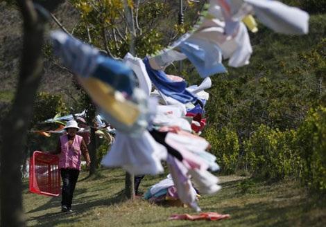 Những tình nguyện viên thầm lặng trong thảm họa chìm phà ở Hàn Quốc