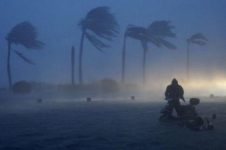 Bão Rammasun gây gió mạnh và mưa lớn tại Hải Khẩu, Hải Nam, Trung Quốc.