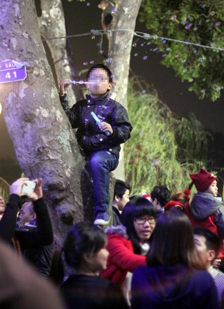 Nhiều người trèo cây, trèo cột để dễ dàng chứng kiến những hình ảnh đẹp của đêm cuối năm 2014