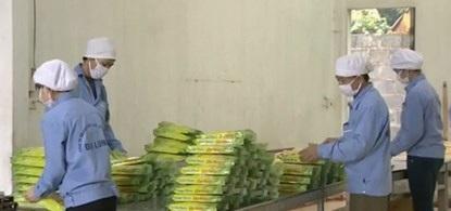 Công nhân đang gấp rút đóng gói cơm cháy để giao hàng tới cơ sở