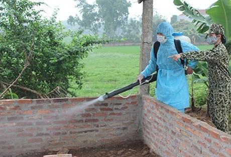 Phun thuốc diệt muỗi tại khu chăn nuôi
