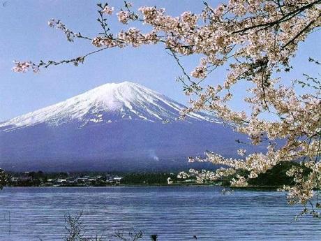 Lầm tưởng 2: Chi phí tại Nhật Bản quá đắt đỏ